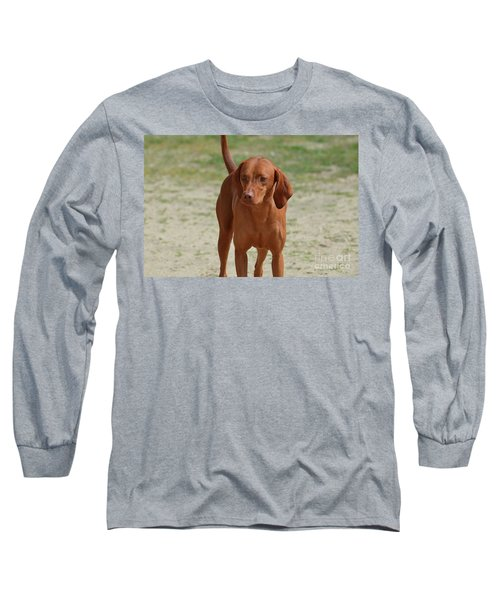 Adorable Redbone Coonhound Standing Alone Long Sleeve T-Shirt
