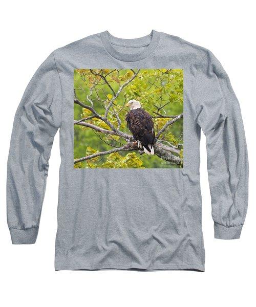 Adult Bald Eagle Long Sleeve T-Shirt