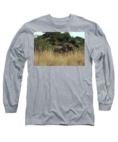 Long Sleeve T-Shirt featuring the photograph African Elephant In Tall Grass by Karen Zuk Rosenblatt