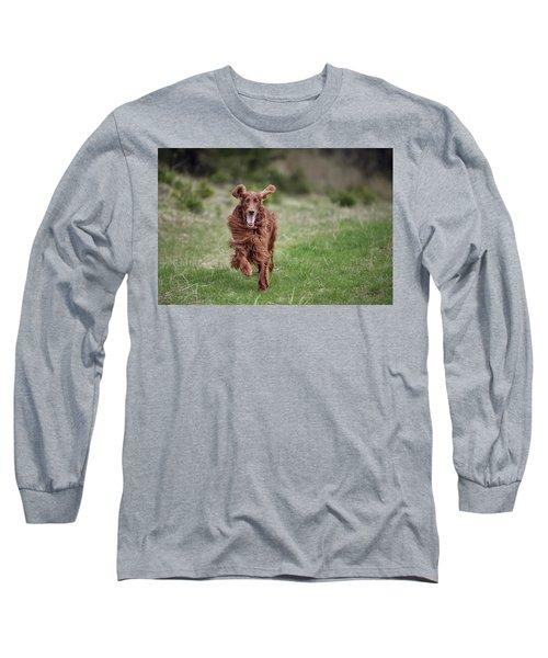 Allegro's March Long Sleeve T-Shirt by Robert Krajnc