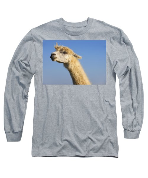 Long Sleeve T-Shirt featuring the photograph Alpaca by Skip Hunt