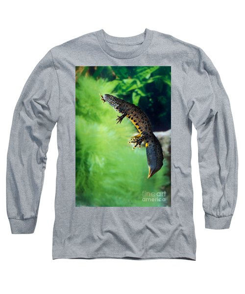 Alpine Newt Triturus Alpestris Long Sleeve T-Shirt by Gerard Lacz