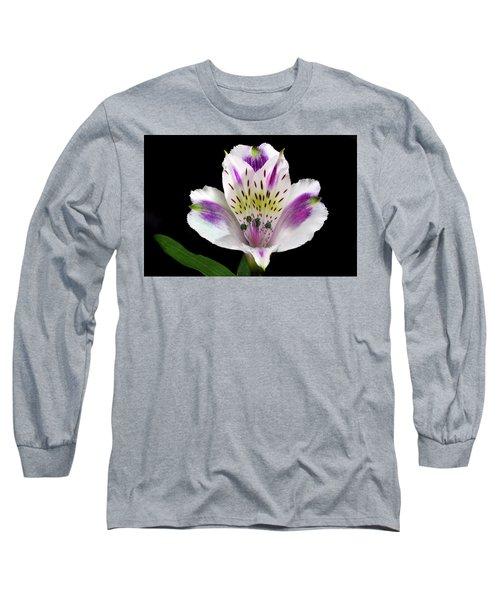 Alstroemeria Portrait. Long Sleeve T-Shirt