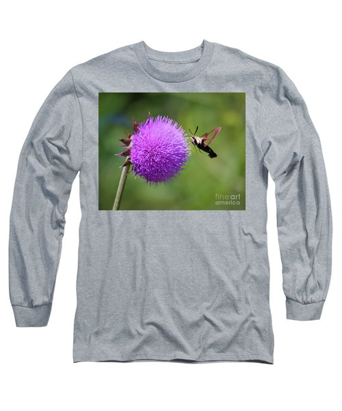 Long Sleeve T-Shirt featuring the photograph Amazing Insects - Hummingbird Moth by Kerri Farley