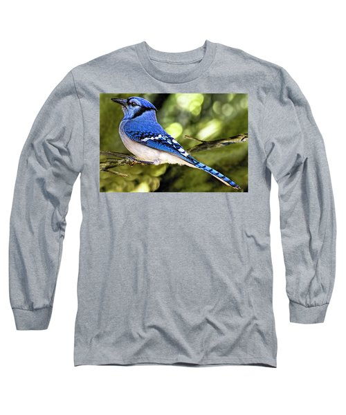 Blue Jay Bokeh Long Sleeve T-Shirt
