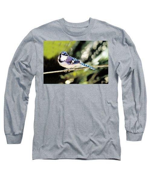 American Blue Jay On Alert Long Sleeve T-Shirt