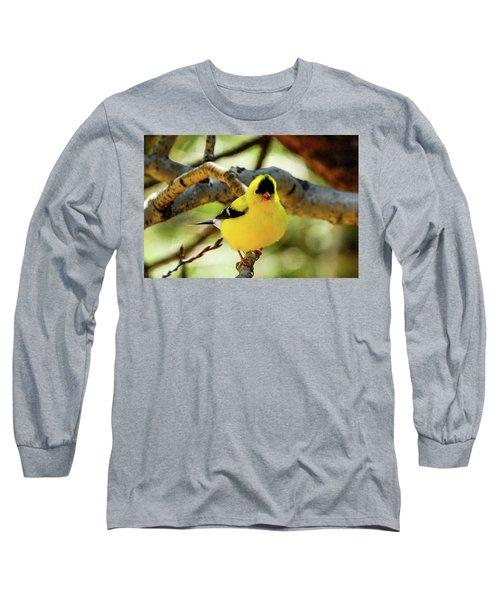 American Goldfinch On Aspen Long Sleeve T-Shirt by Marilyn Burton