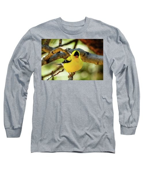 American Goldfinch On Aspen Long Sleeve T-Shirt