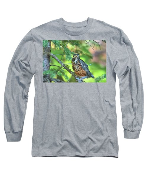 Long Sleeve T-Shirt featuring the photograph American Robin Fledgling by Debbie Stahre