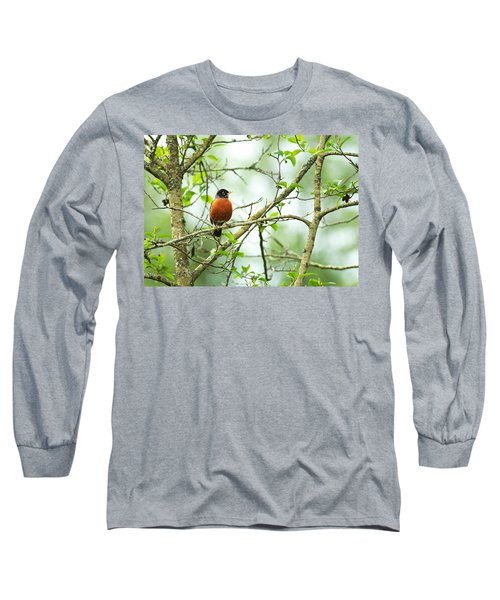 American Robin On Tree Branch Long Sleeve T-Shirt