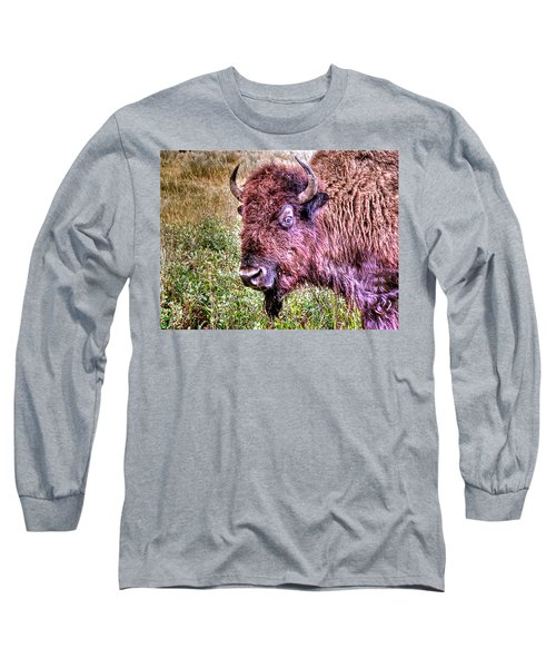 An Astonished Bison Long Sleeve T-Shirt