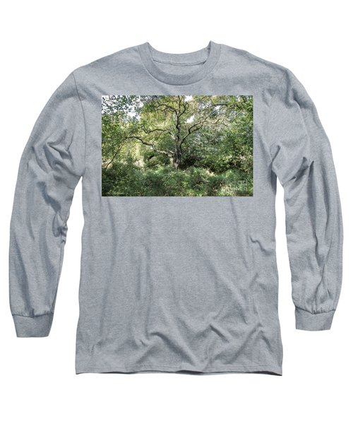 Long Sleeve T-Shirt featuring the photograph An Old One In The Forest by Arik Baltinester