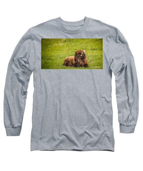 Long Sleeve T-Shirt featuring the photograph Ancient Bison by Rikk Flohr