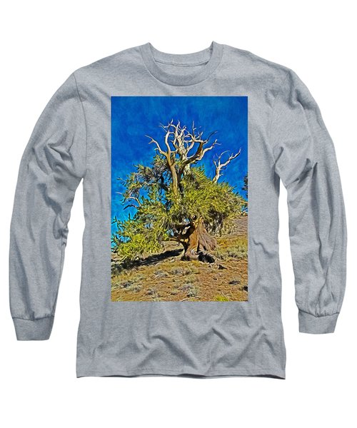 Ancient Bristlecone Pine Long Sleeve T-Shirt