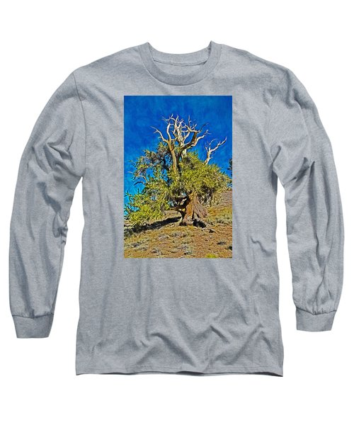 Ancient Bristlecone Pine Long Sleeve T-Shirt