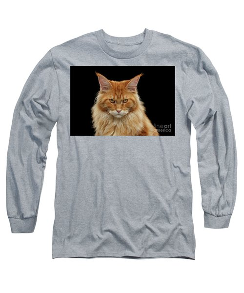 Angry Ginger Maine Coon Cat Gazing On Black Background Long Sleeve T-Shirt by Sergey Taran