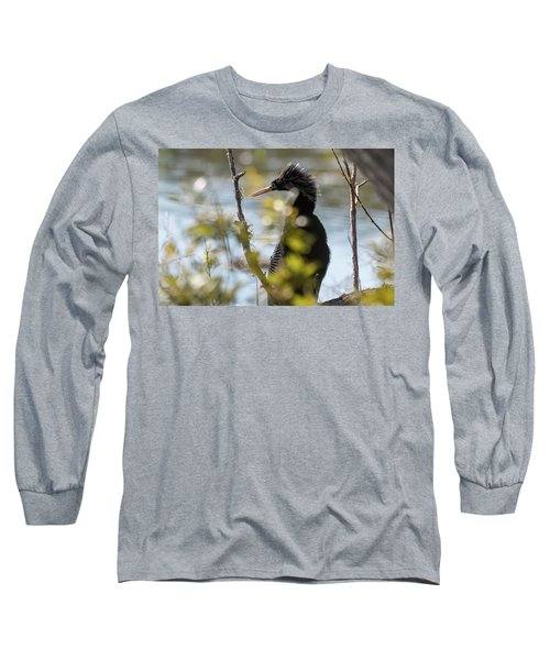 Anhinga 3 March 2018 Long Sleeve T-Shirt