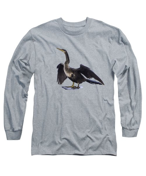 Anhinga Drying Wings Transparency Long Sleeve T-Shirt