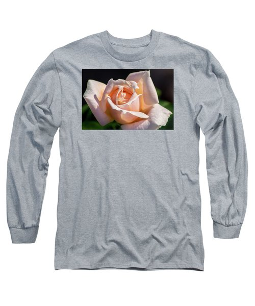 Another Beautiful Pink Rose Long Sleeve T-Shirt