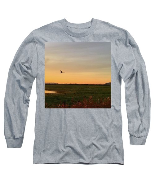 Another Iphone Shot Of The Swan Flying Long Sleeve T-Shirt by John Edwards