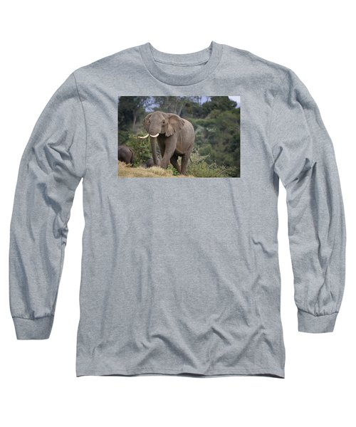 Long Sleeve T-Shirt featuring the photograph Approaching The Waterhole by Gary Hall