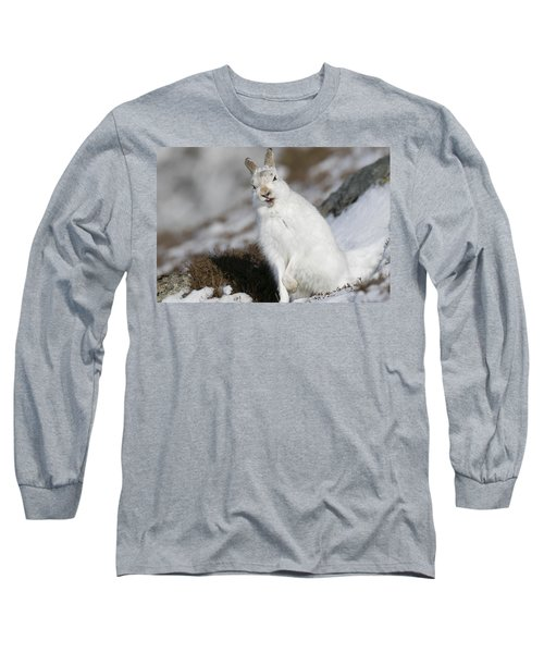 Are You Kidding? - Mountain Hare #14 Long Sleeve T-Shirt