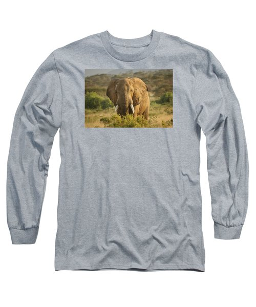Long Sleeve T-Shirt featuring the photograph Are You Looking At Me? by Gary Hall