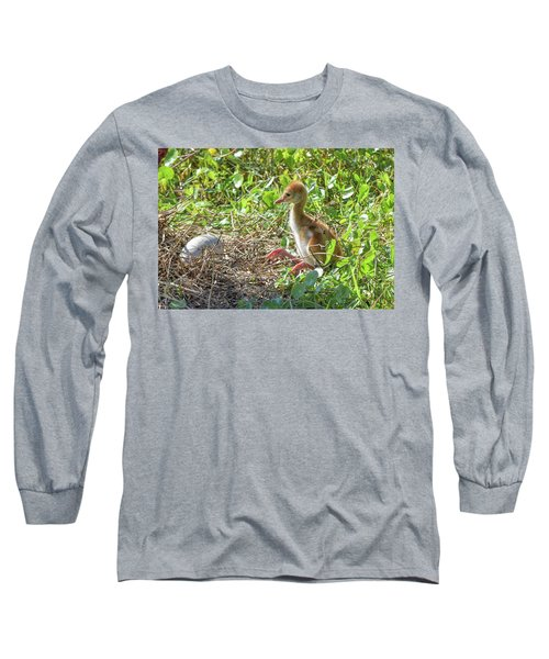 Are You Coming Out? Long Sleeve T-Shirt