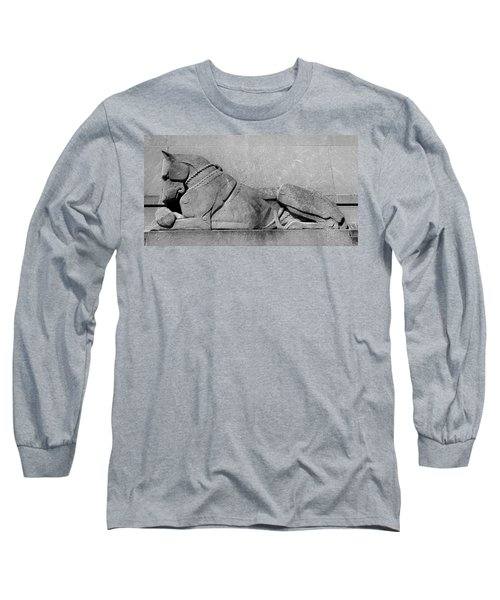 Long Sleeve T-Shirt featuring the photograph Art Deco Great Dane by Richard Ortolano