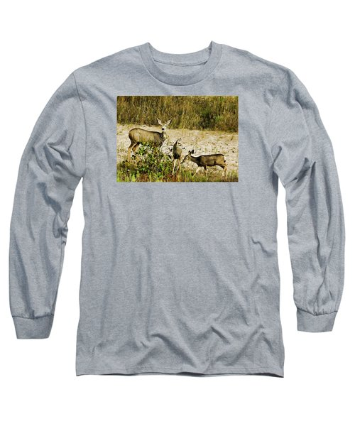 Mule Doe And Her Twins Long Sleeve T-Shirt by Bill Kesler