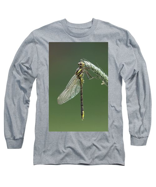 Ashy Or Dusky Clubtail Long Sleeve T-Shirt
