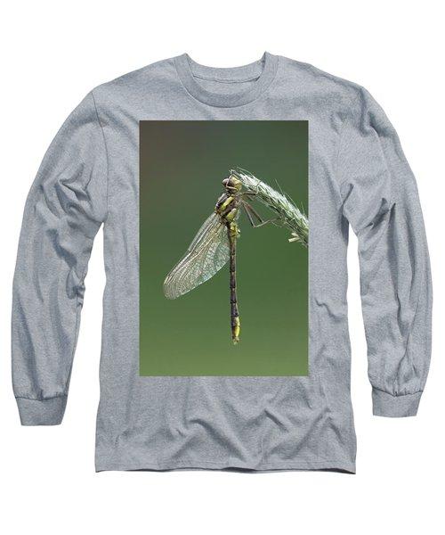 Ashy Or Dusky Clubtail Long Sleeve T-Shirt