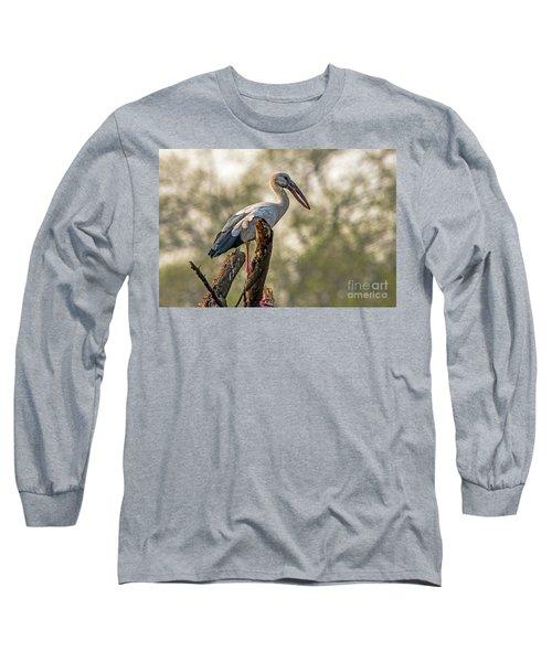 Asian Openbill Long Sleeve T-Shirt by Pravine Chester
