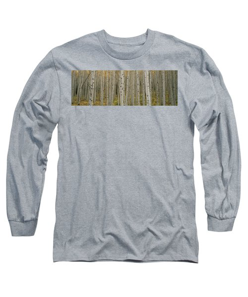 Aspen Grove In Fall, Kebler Pass Long Sleeve T-Shirt