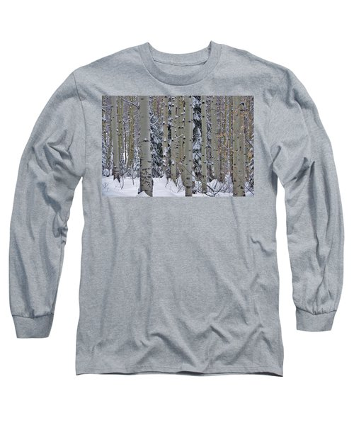 Aspen Snow Long Sleeve T-Shirt by Matt Helm