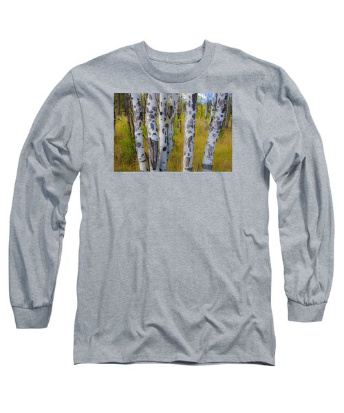 Long Sleeve T-Shirt featuring the photograph Aspens by Gary Lengyel