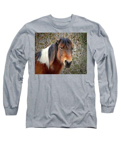 Assateague Island Pony Patricia Irene Long Sleeve T-Shirt