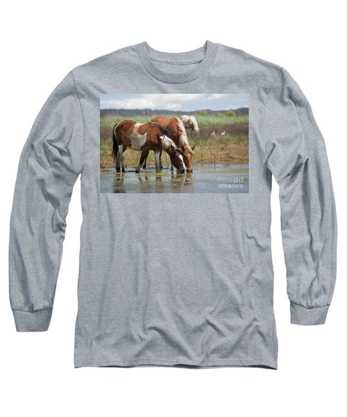 Assateague Ponies Tale Drink Long Sleeve T-Shirt