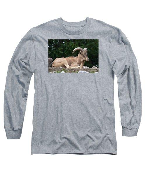 Auodad 20120714_80a Long Sleeve T-Shirt