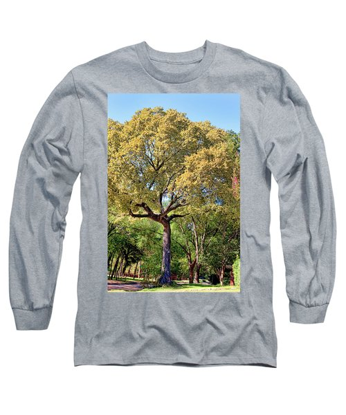 Autumn In Summer Long Sleeve T-Shirt