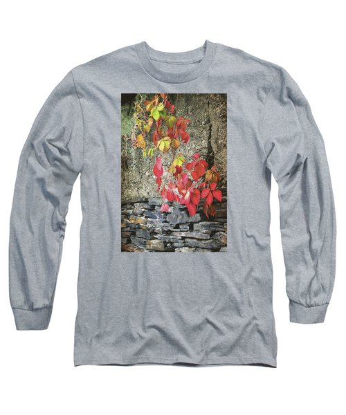 Long Sleeve T-Shirt featuring the photograph Autumn Leaves by Tom Singleton