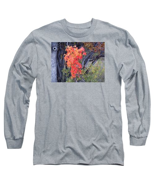 Autumn Oak Leaves Long Sleeve T-Shirt