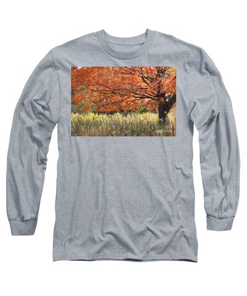 Autumn Red   Long Sleeve T-Shirt by Paula Guttilla