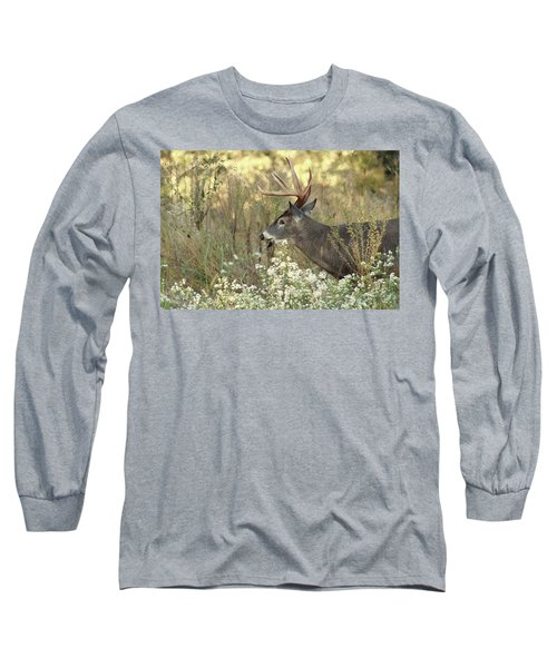 Autumn Whitetail In The Smokies Long Sleeve T-Shirt by TnBackroadsPhotos
