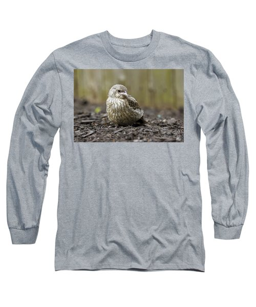 Long Sleeve T-Shirt featuring the photograph Baby Bird by Denise Pohl