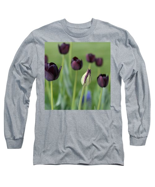 Long Sleeve T-Shirt featuring the photograph Baby Bloomer by Linda Mishler