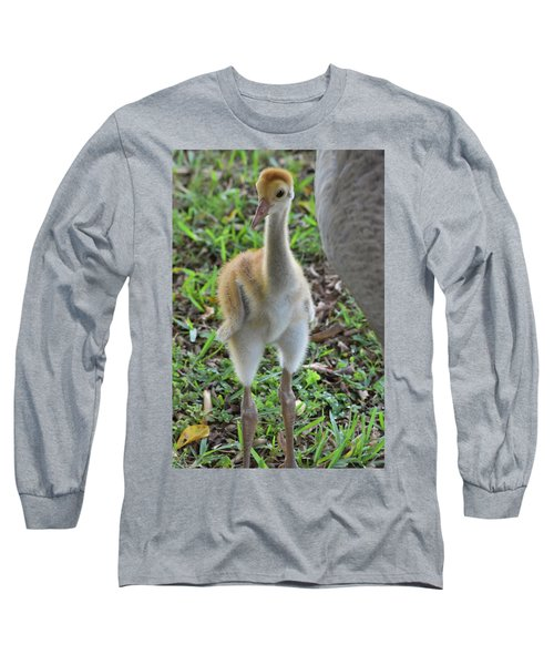 Baby Crane At A Month Old Long Sleeve T-Shirt