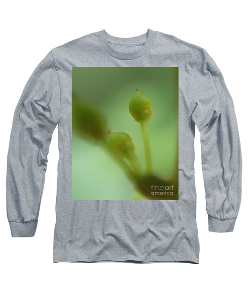 Baby Grapes Long Sleeve T-Shirt by Christina Verdgeline