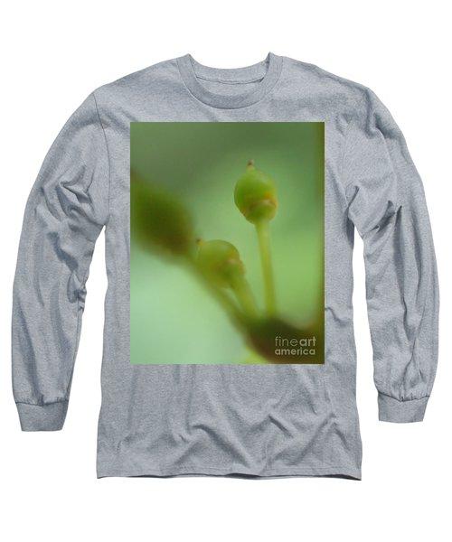 Baby Grapes Long Sleeve T-Shirt