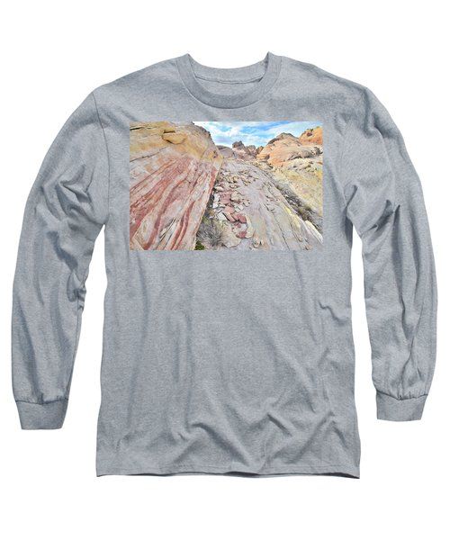 Back Country Valley Of Fire Long Sleeve T-Shirt by Ray Mathis